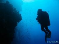 Dykker i Egypten 2011