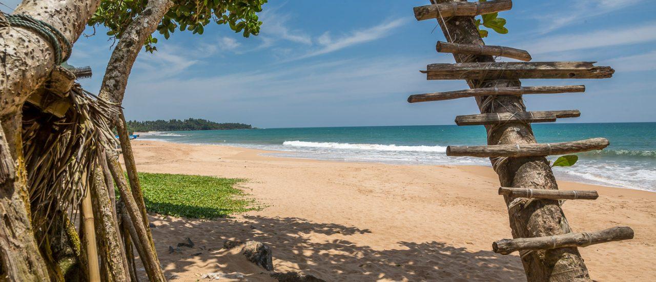 Sri Lanka – Et skatkammer af mennesker, natur og dyr