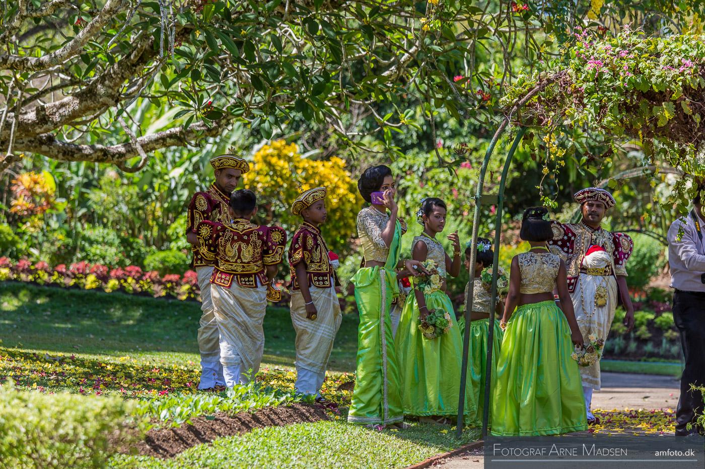 2016 Sri Lanka_Dag 4 Kandy botanical Garden_401