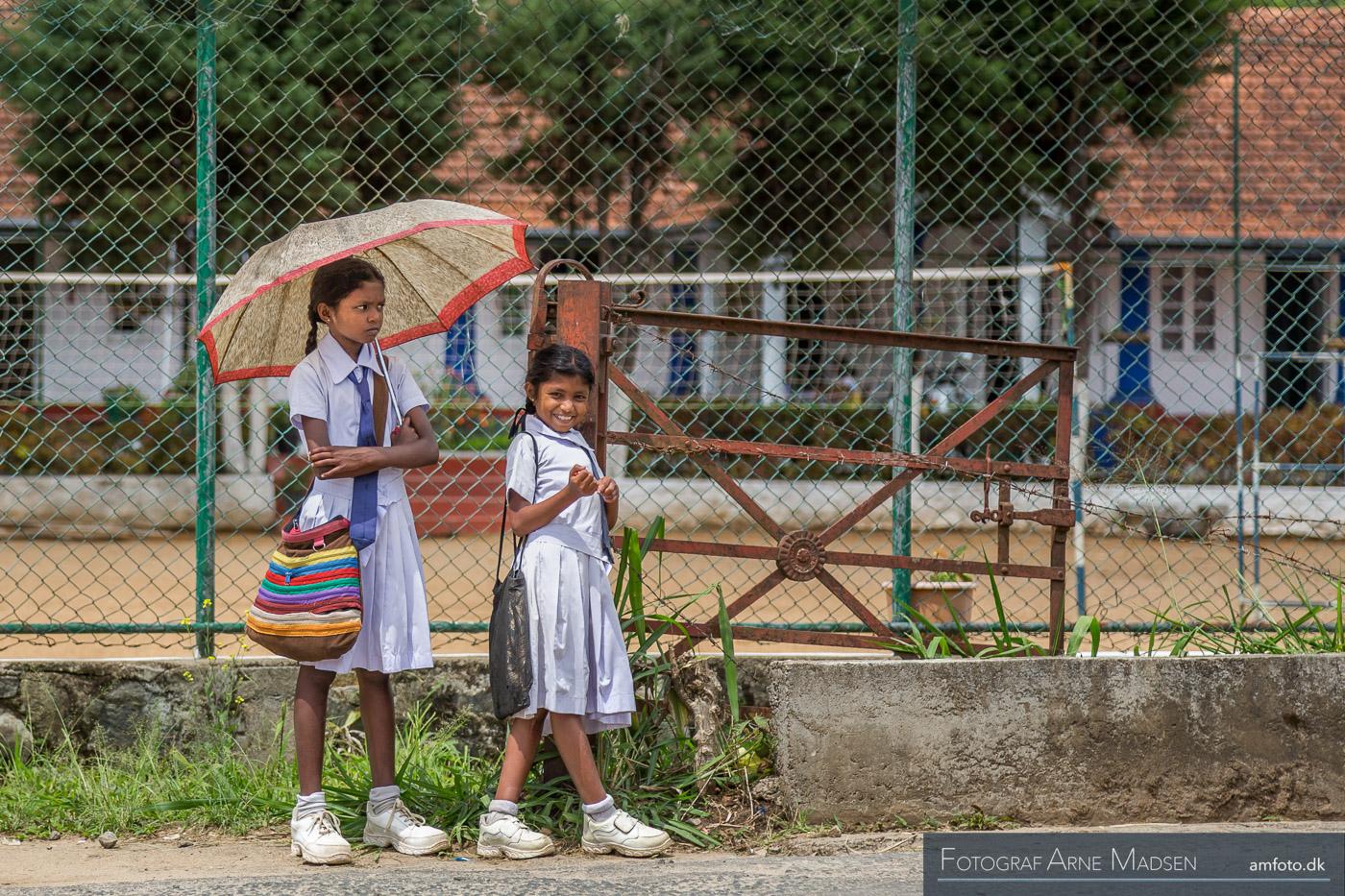 2016 Sri Lanka_Dag 4 Kandy togtur til Hutton_504